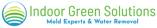 Indoor Green Solutions | Mold Removal in Washington DC