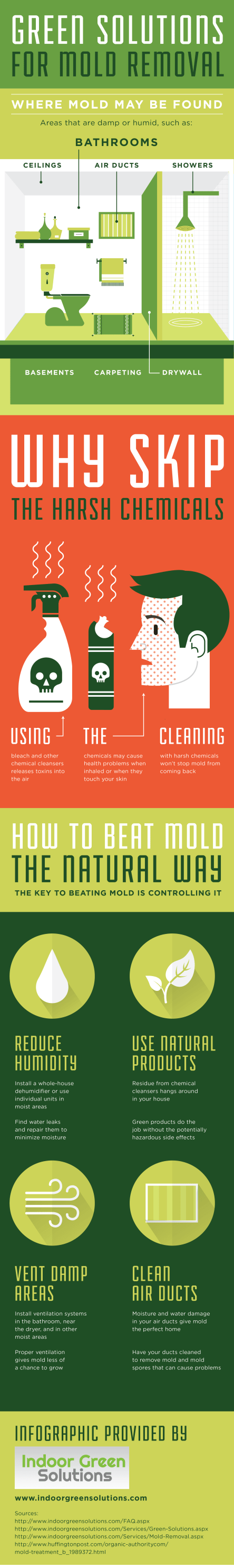 Green Solutions for Mold Removal